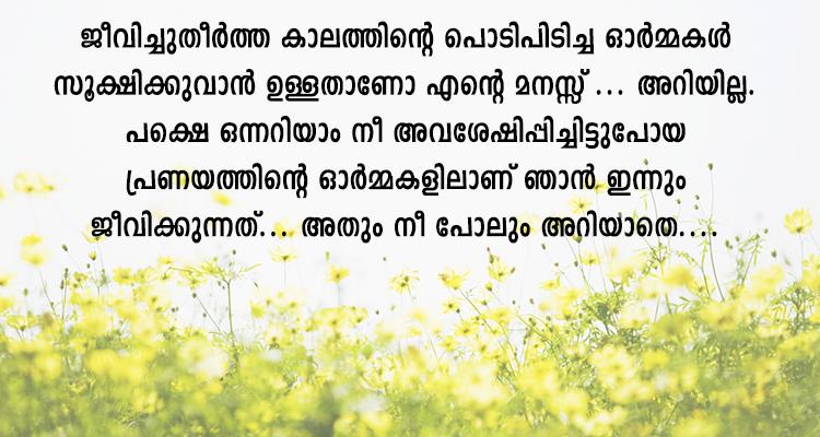 Malayalam Scrap Pranayam Love Scrap 15 Pranayam Malayalam Scrap